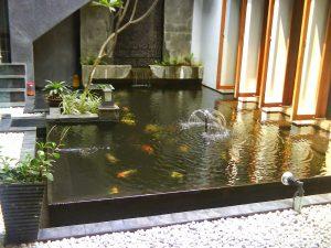 tukang kolam ikan bandung